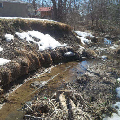 Sophia Creek (2).jpg
