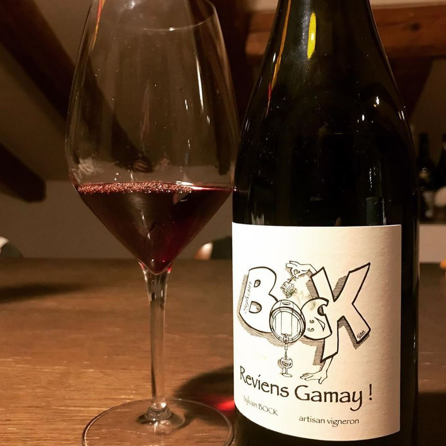 Reviens Gamay !