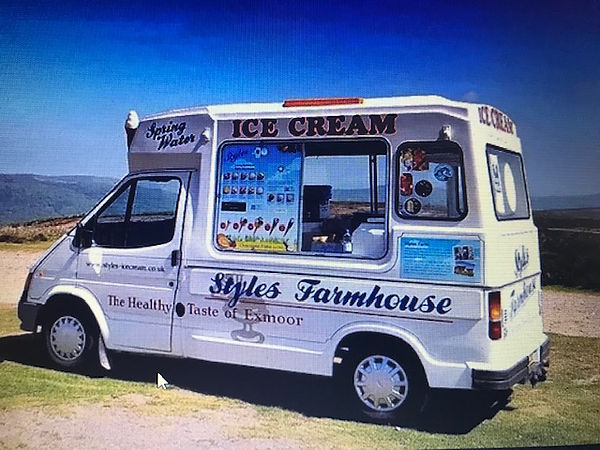 teddy the styles ice cream van.jpg