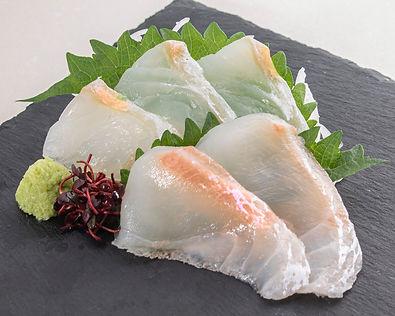 ヒラメ・鯛(1880x1504).jpg