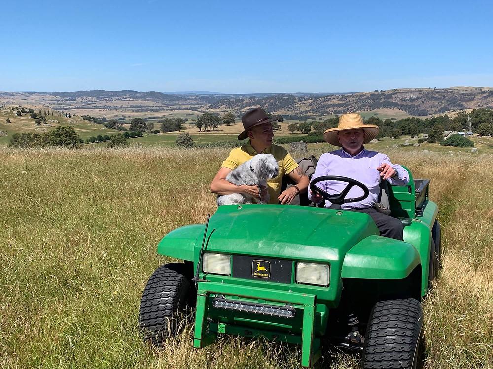 Exploring Peter's truffle farm