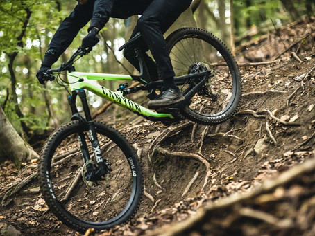 RELEASE: The all-new Canyon Spectral 29