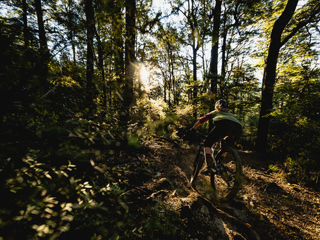 News: Wairoa Gorge MTB Park is Open for Business