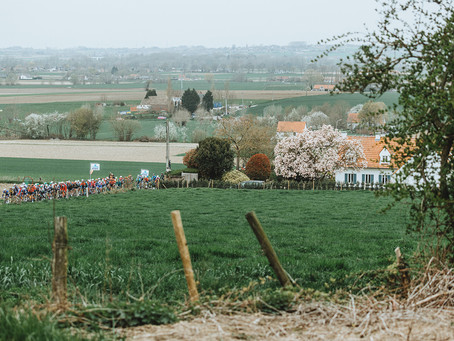 Story: Tour of Flanders