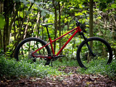 Review: Norco Torrent