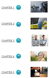 5 chapters.png