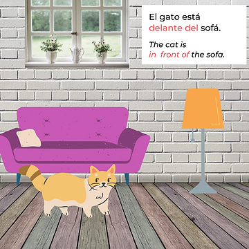 2 Gato.png