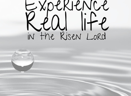 Experience Real Life in the Risen Lord