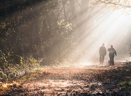 Walking Whilst Talking
