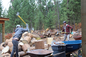 many hands make lots of wood