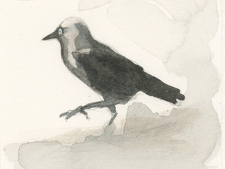 DRAWING FROM BALLYCASTLE A Sketchbook and Small-scale Drawing Workshop with Susan Hagen March 8-14,