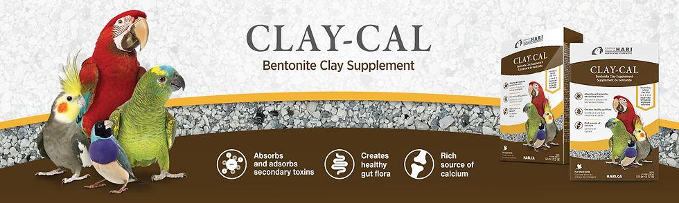 Claycal_banner_1500x450_EN.jpg