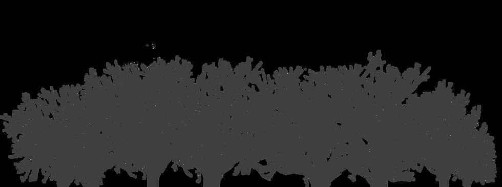 Trees%252525203%25252520Vector_edited_ed