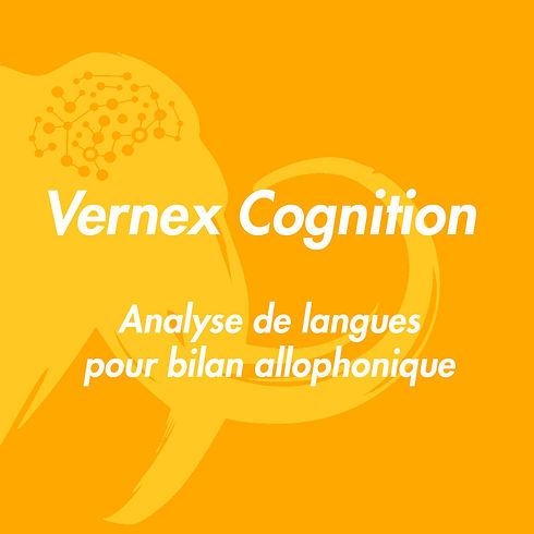 Vidéos-Vernex.jpg