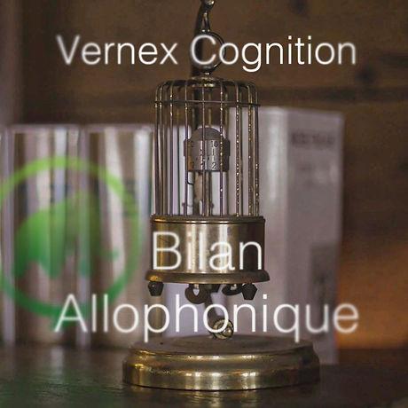 Vernex-Formation.jpg