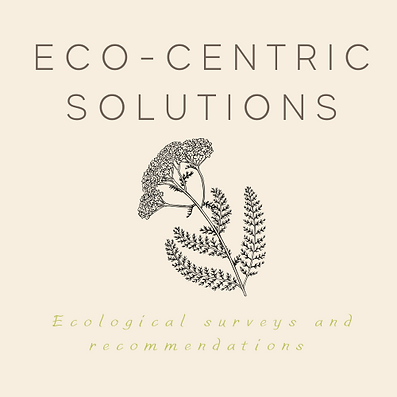 ecocentric solutions Logo 15.02.2020.png