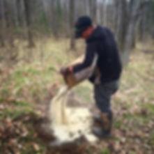 deer mineral