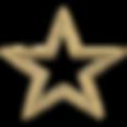 estrela 2-600x600.png