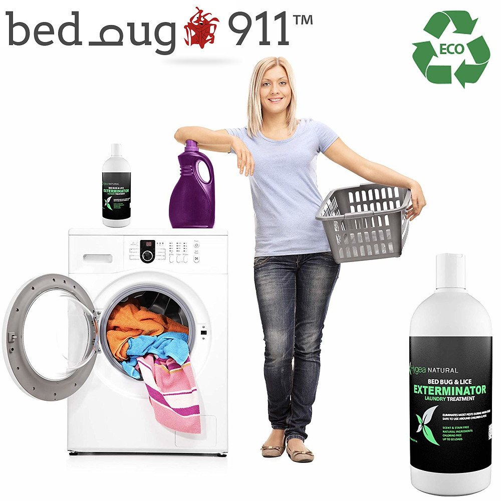 Bed Bug Laundry