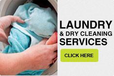 Laundry and Dry Cleaning service Bed Bug