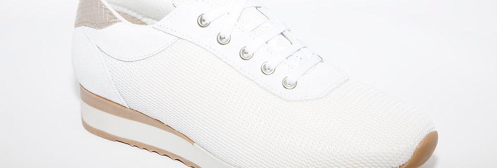 Coral E300 White