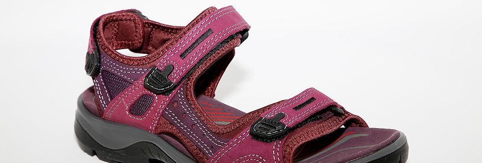 Ecco 069563 Purple