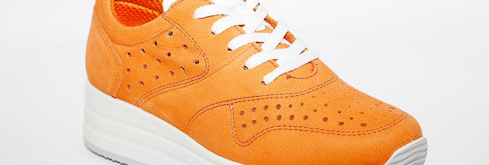 IGI & CO 5165733 Orange
