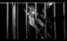 Screen Shot 2020-06-18 at 14.52.14 1.png