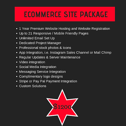 ecommerce website package.png