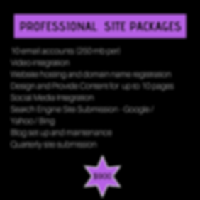 professional site package22.png