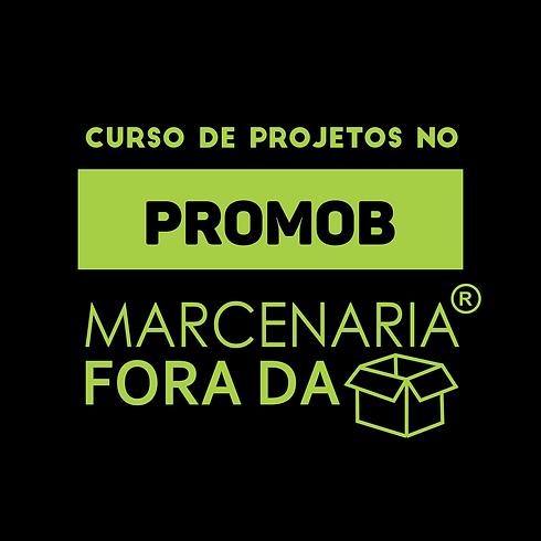 LOGO CURSO PROMOB.png
