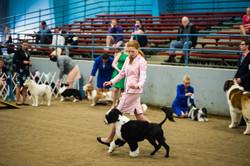 AKC Dog Show Grays Harbor Fairgrounds-3.