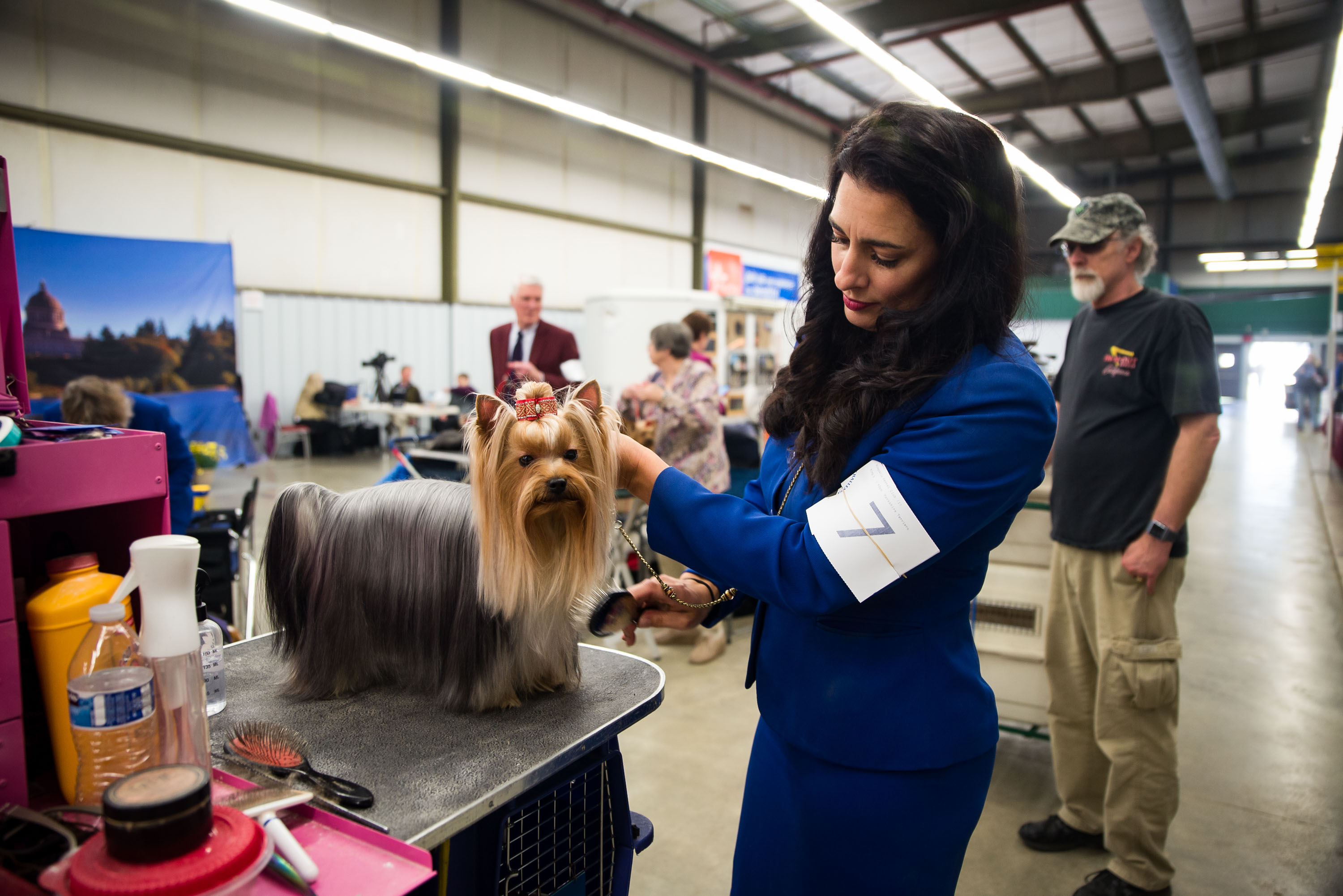 AKC Dog Show Grays Harbor Fairgrounds-15