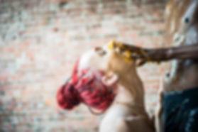 Honey Kiki Ball Web-50.jpg