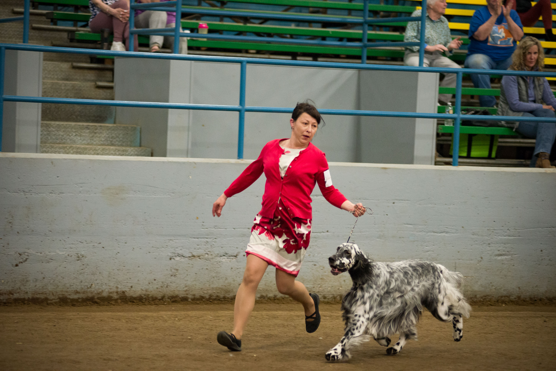 AKC Dog Show Grays Harbor Fairgrounds-12