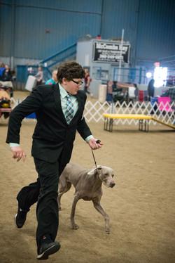 AKC Dog Show Grays Harbor Fairgrounds-25