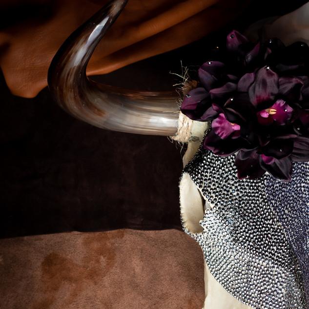Skull Product Photo