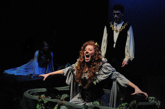 Ophelia Forever  by Amy Beth Kerstein Peabody Chamber Opera  (Stage Director and Set Designer)  Photo by Edward S. Davis