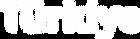 TIM_logo_T_beyaz.png