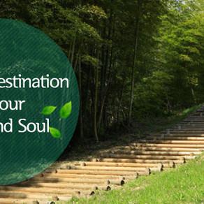 การรักษาร่างกายและจิตใจ (Healing Destination for Your Body and Soul)