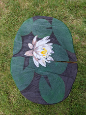 A Lotus to Sit On