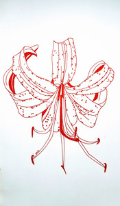 See how he clothes the lily. They grow, neither toil nor spin. Will he not clothe you, oh you of little faith?