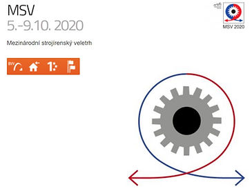 MSV 2020 logo.jpg