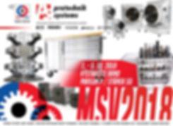 MSV2018-FLYER.jpg