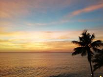 1135_mirin.world_Fiji.jpg