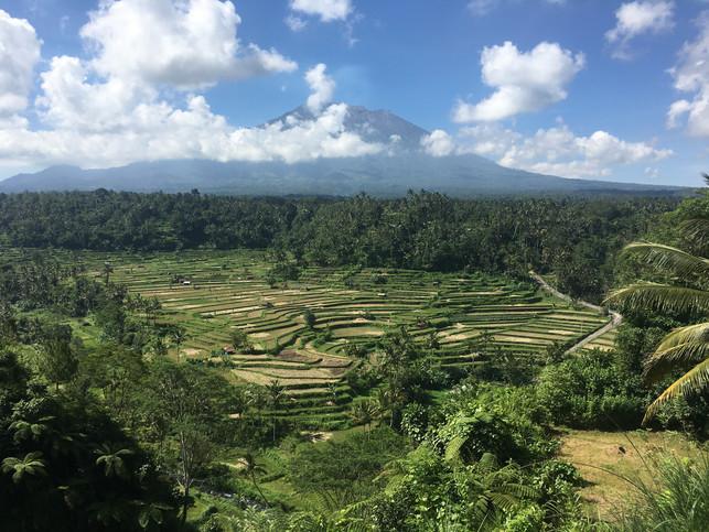 1615_mirin.world_Bali.JPG