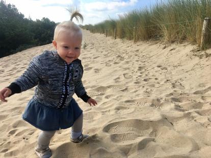 The dunes of Noordwijk