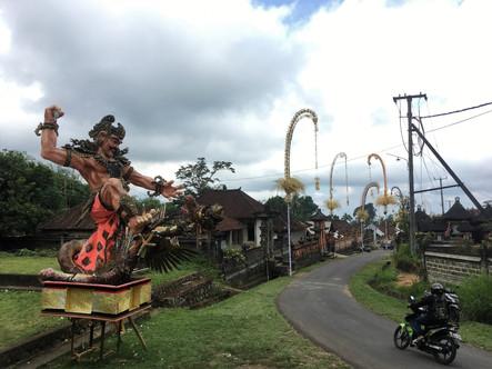 1440_mirin.world_Bali.JPG