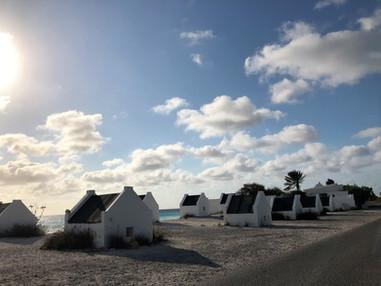 163_mirin.world_Bonaire.JPG