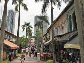 1044_mirin.world_Singapore.JPG